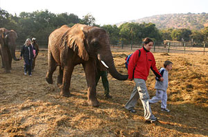 Sanctuaire des Elephants